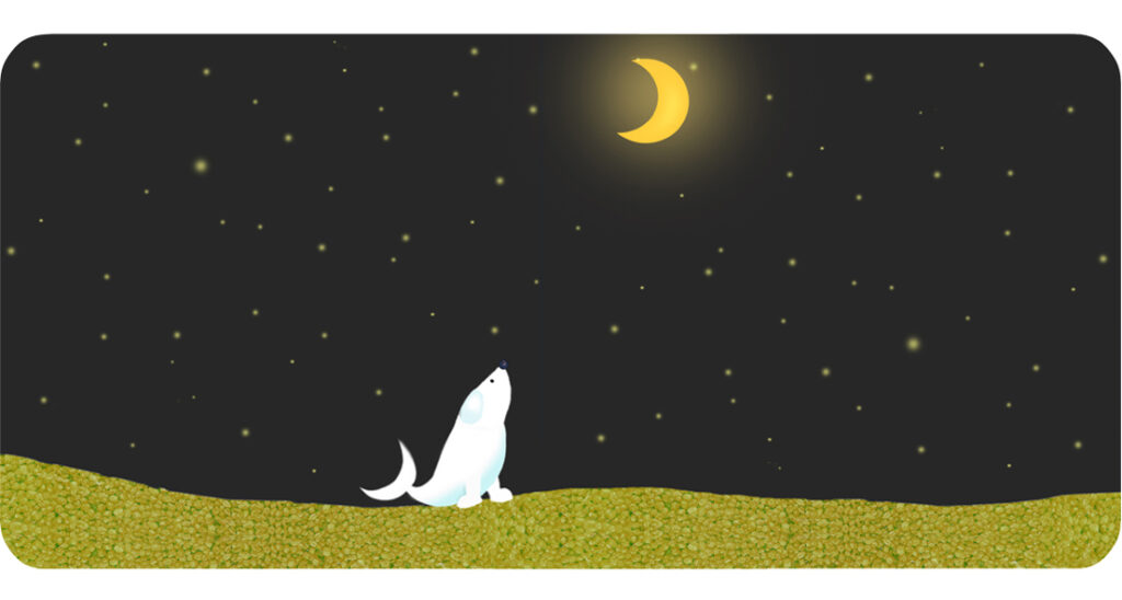The Dog-fish finally finds the moon and admires it.