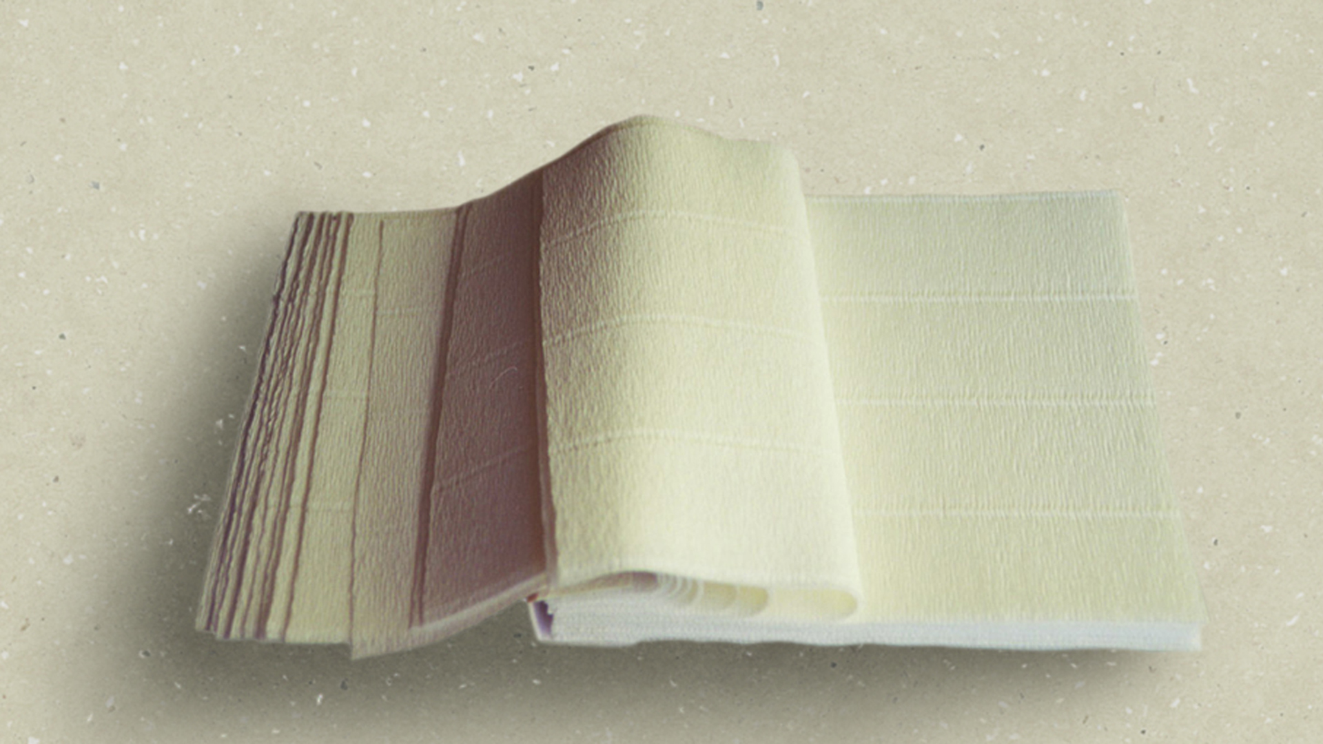 the sound of paper and sound books