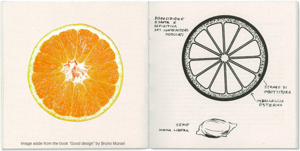 The orange fruit as example of perfect packaging by Bruno Munari