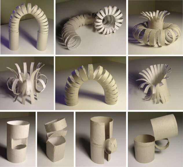all the possible ways to transform  a toilet paper roll